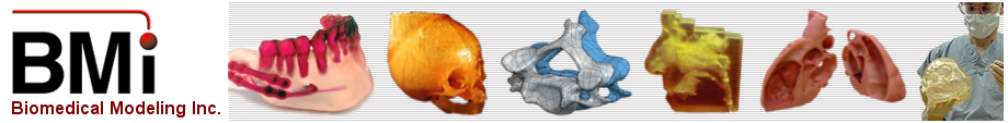 Biomedical Modeling Inc. Your source for custom anatomical models.